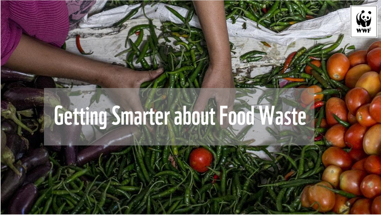 Getting smarter about food waste